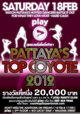Pattaya Coyote
