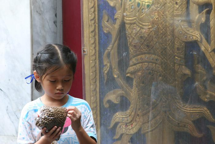 A young girl opens a bag of fish food to feed the fish at a temple and make merit.