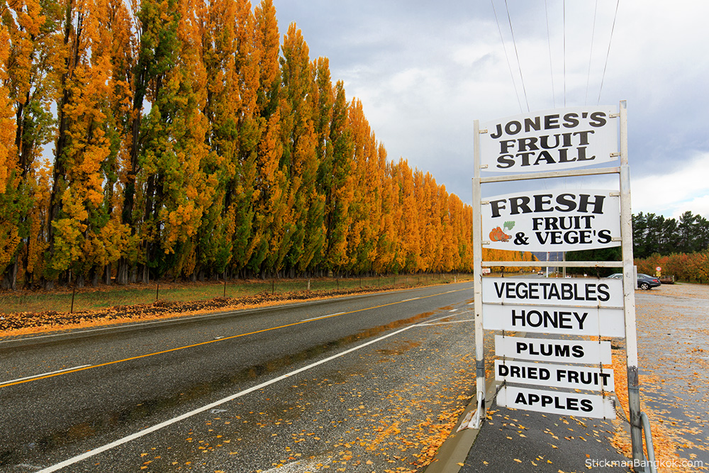 streetside fruit stall, Cromwell, New Zealand